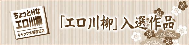 エロ川柳入選作品~